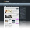 Woo My Your Weblog Gray Premium Wordpress Theme