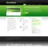 Green Business 2 Column Premium Wordpress Theme